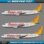 Pegasus Airlines Boeing 737 fleet types