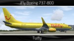 TUIfly Boeing 737-800 - D-AHFX