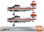 RWAI An-2 Spb GUGA